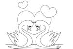 Tranh tô màu cặp đôi thiên nga nhỏ
