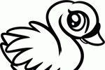 Tranh tô màu con chim thiên nga con