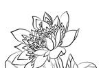 Tranh tô màu hoa sen linh thiêng