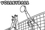 Tranh tô màu thi đấu bóng chuyền